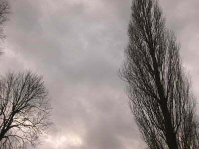 gloomy400