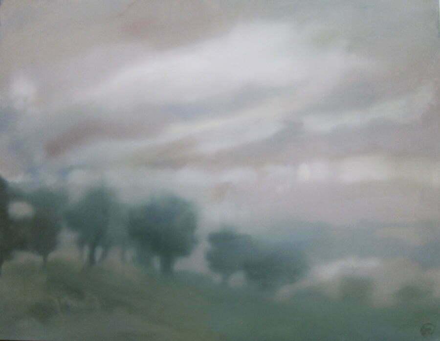 Berkeley Fog900